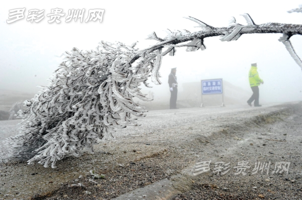"""30县市下雪了!低温直逼""""史上最冷"""""""