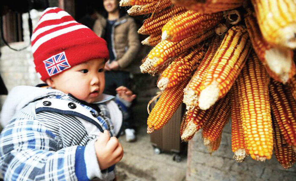 在深圳出生的赵一鸣两岁了,第一次回老家