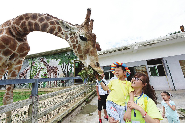 50名耳障儿童游野生动物园