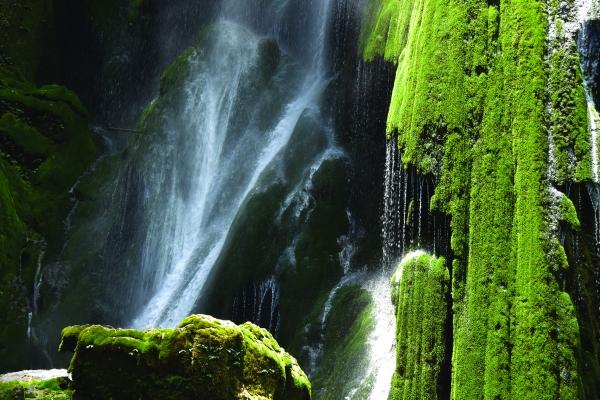 原始生态的十万溪峡谷