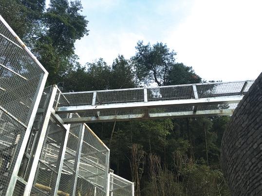 黔灵山公园动物园10月1日正式开放 有黑熊 金钱豹