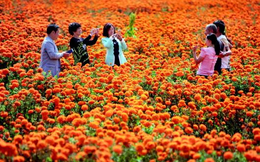 """贵州风景吸引全国各地游客一起""""嗨"""""""