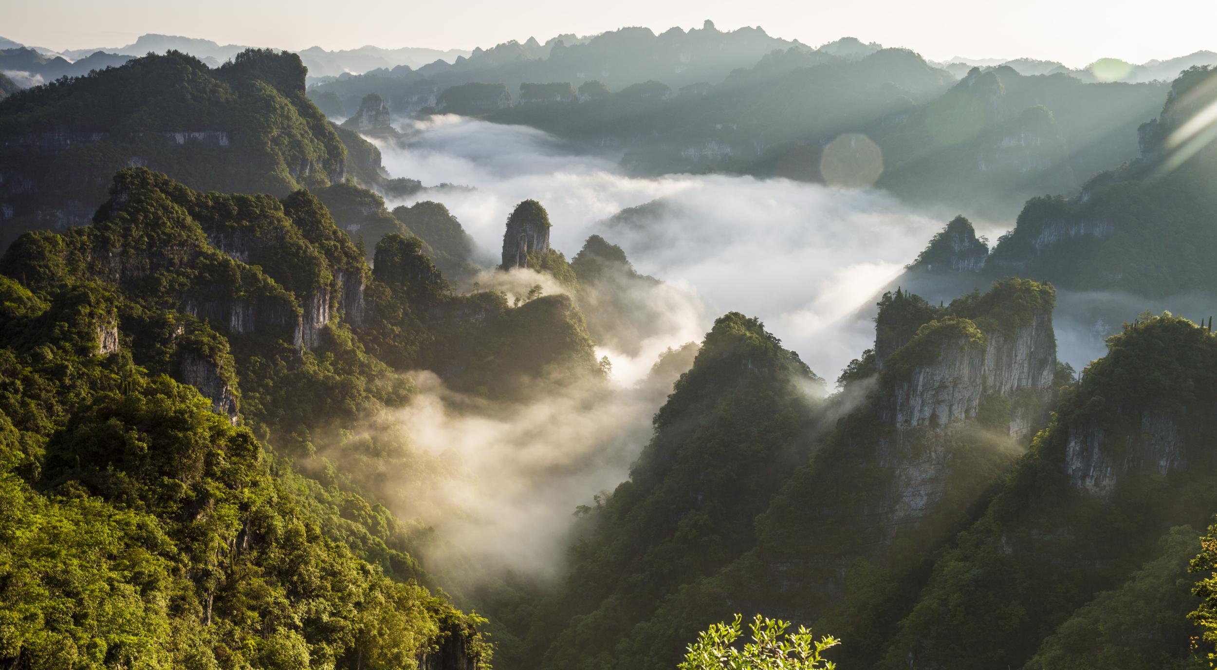 九龙山景区升级改造,将重点提升游客的游览体验,以更高的标准升级打造