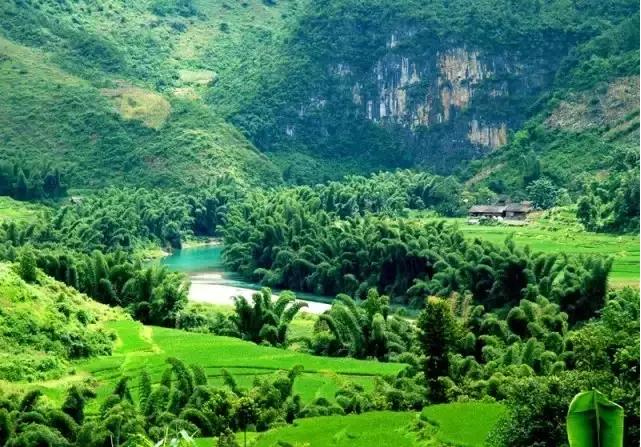贵州平塘甲茶风景区