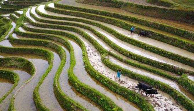 贵州榕江 谷雨时节耕种忙