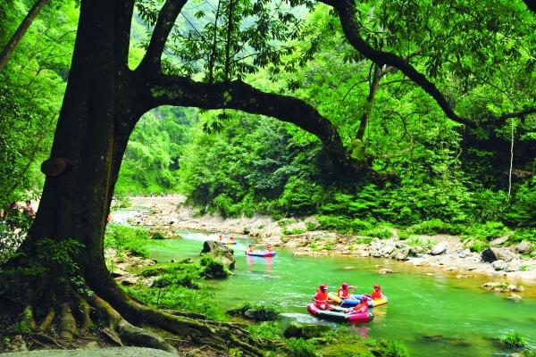 镇远高过河风景区绿阴如盖,游客可免受暴晒之苦.
