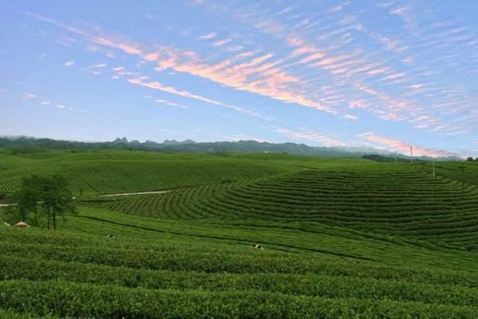 """这些神秘村庄竟深藏贵州 到""""最美村庄""""寻找美丽乡愁"""