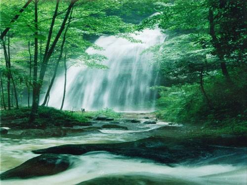 贵州旅游    长坡岭国家级森林公园位于贵阳市白云区,总面积为1075