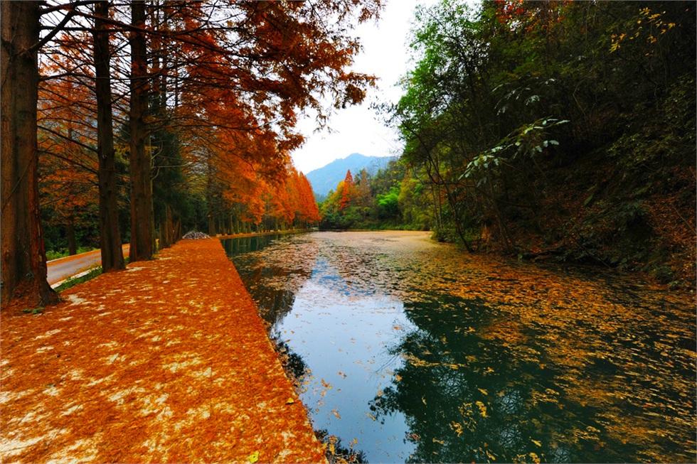 朱家山国家森林公园