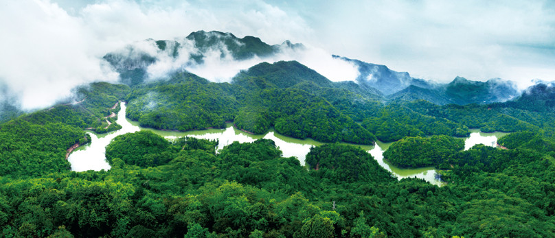 【多彩贵州网综合】值得一去!贵州最美的国家级森林公园图片