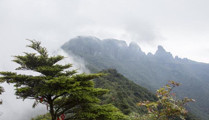 【高清组图】大美梵天净土――梵净山