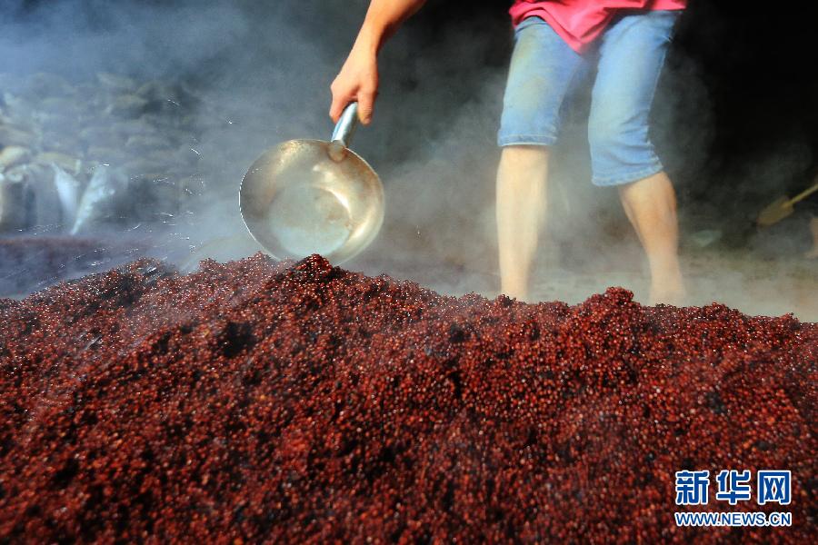 """重阳""""下沙""""――茅台镇开启新一轮酿酒季"""