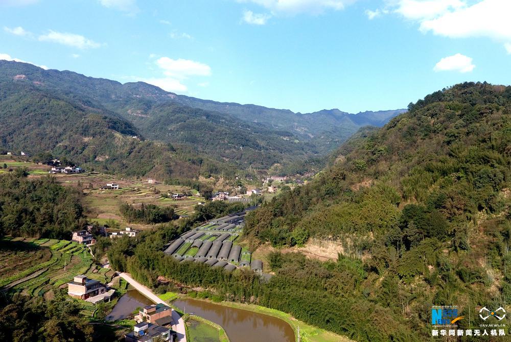 图为3月8日航拍的贵州省赤水市乡村风光.周远钢摄