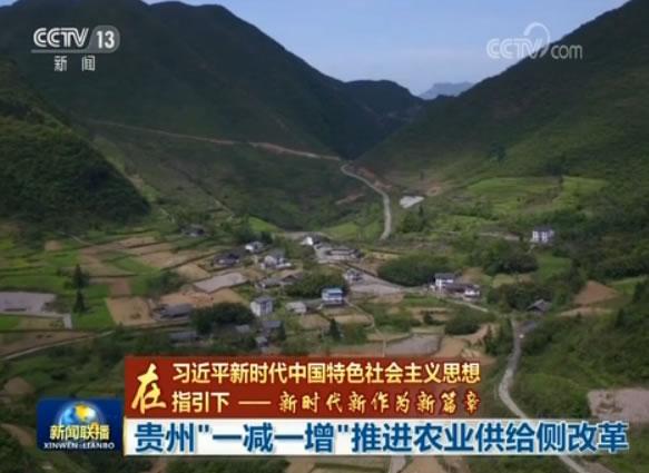 """牢记总书记教导:贵州""""一减一增""""推进农业供给侧改革"""