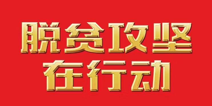 """多彩贵州网 -【脱贫攻坚在行动】 """"空壳村""""→""""黔中"""""""
