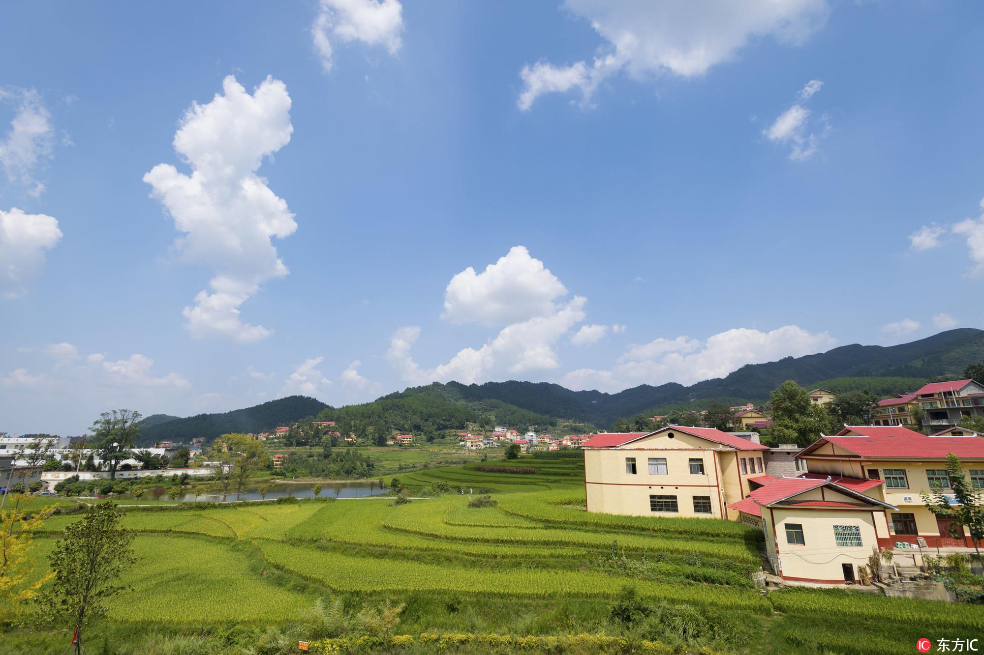 贵州省仁怀市高大坪镇银水村,蓝天,白云,稻田与美丽乡村相互映衬,生机