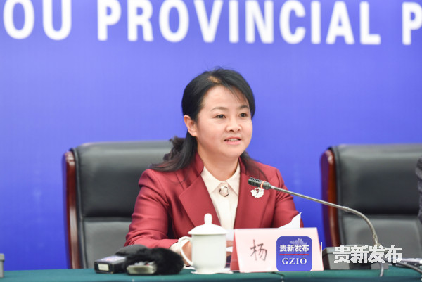 省妇儿工委副主任、省妇联主席杨玲介绍有关情况